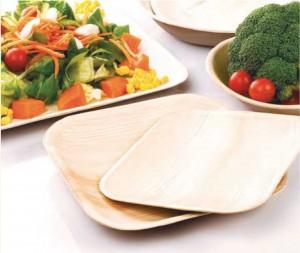assiette-naturelle-degradable